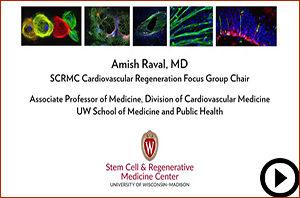 Cardiovascular Regeneration Cover image